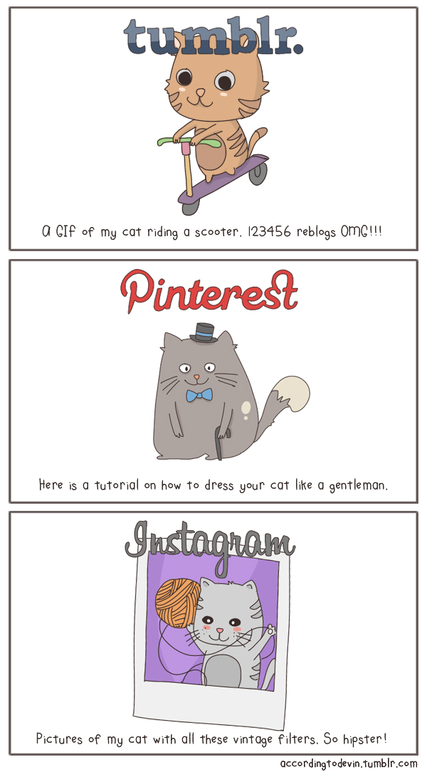 state-of-the-internet-cats-02